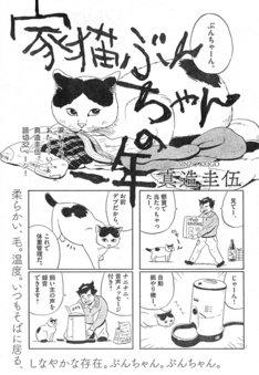 真造圭伍による新作読み切り「家猫ぶんちゃんの一年」の扉ページ。