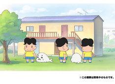 ニュース記事ランキング6位より、「少年アシベ GO!GO!ゴマちゃん」のカラーカット。(c)森下裕美・OOP/Team Goma