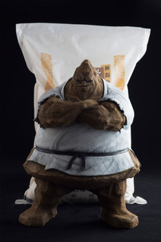 SpiceSeed「ザ・魔雲天」(手前)と、5キロの米(後ろ)との比較画像。