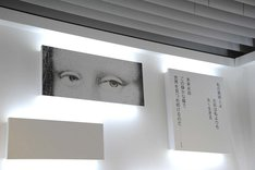 「王妃アントワネット、モナリザに逢う」の作中で描かれた「モナリザ」の目。
