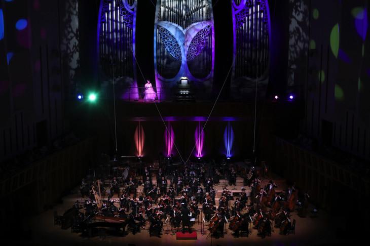 「美少女戦士セーラームーン25周年記念 Classic Concert」より。