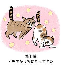「しみことトモヱ」第1話より。