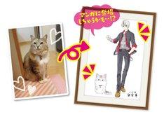 「ねこ男子 ニャンキーハイスクール あなたのねこちゃんをねこ男子化」イラスト化された猫の一例。