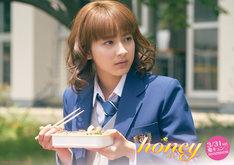 映画「honey」パネル