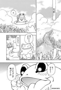 「HEROES」より。(c)集英社/柴田亜美