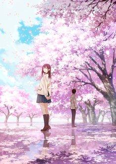 劇場アニメ「君の膵臓をたべたい」キービジュアル解禁!公開は2018年初秋