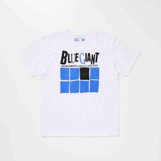 Tシャツの1種。