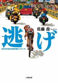 「逃げ 2014年全日本選手権ロードレース」