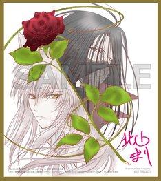 「幽☆遊☆白書 25th Anniversary Blu-ray BOX 暗黒武術会編」特典のミニ色紙。