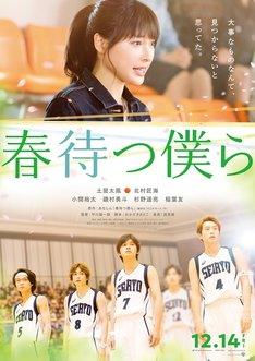 映画「春待つ僕ら」ティザーポスター