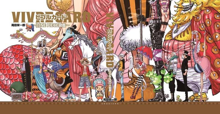 「VIVRE CARD~ONE PIECE図鑑~」のバインダーイラスト。(c)尾田栄一郎/集英社