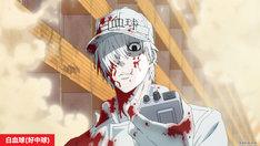 TVアニメ「はたらく細胞」提供素材。