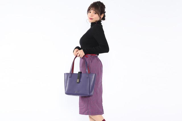 フランスモデルのバッグの使用例。