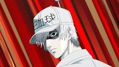 TVアニメ「はたらく細胞」新作エピソード制作決定PVより。