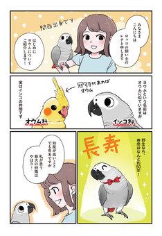 「おはヨウム!ロッコちゃん」第1回より。