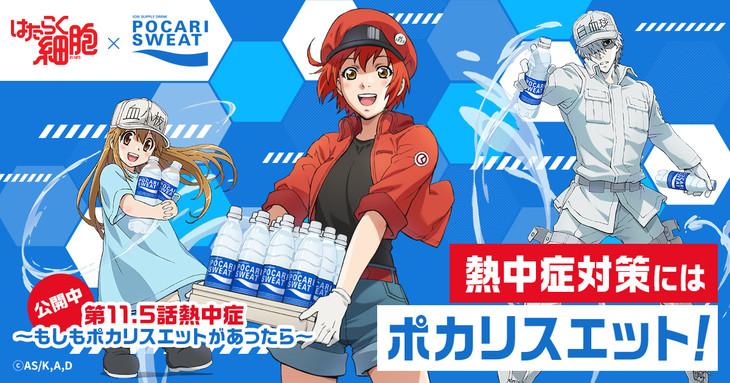 TVアニメ「はたらく細胞」とポカリスエットがコラボビジュアル。