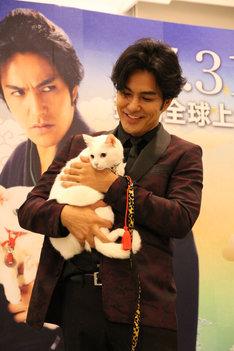 「猫侍 南の島へ行く」台湾プレミアイベントで、現地の白猫シャドウちゃんを抱く北村一輝。(c)2015「続・猫侍」製作委員会