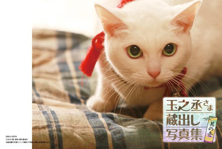「猫侍 南の島へ行く」Blu-ray封入特典の蔵出し写真集 其の壱。(c)2015「続・猫侍」製作委員会