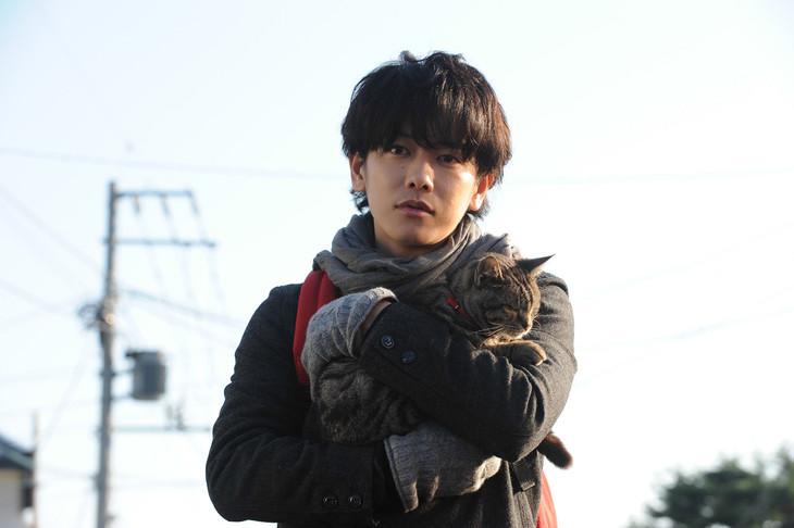 「世界から猫が消えたなら」 (c)2016 映画「世界から猫が消えたなら」製作委員会