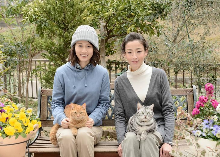 連続ドラマW「グーグーだって猫である2 -good good the fortune cat-」場面写真 (c)WOWOW