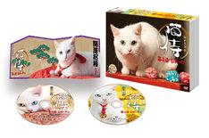 「猫侍 玉之丞、江戸へ行く」DVD展開図