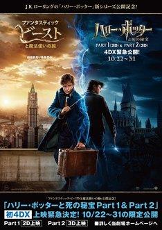 「ハリー・ポッターと死の秘宝 PART1」「ハリー・ポッターと死の秘宝 PART2」4DX版上映劇場に掲出されるポスター。