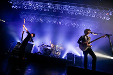UNISON SQUARE GARDEN(Photo by Viola Kam [V'z Twinkle])