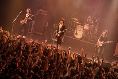the pillows (Photo by Kugino Takahiro)