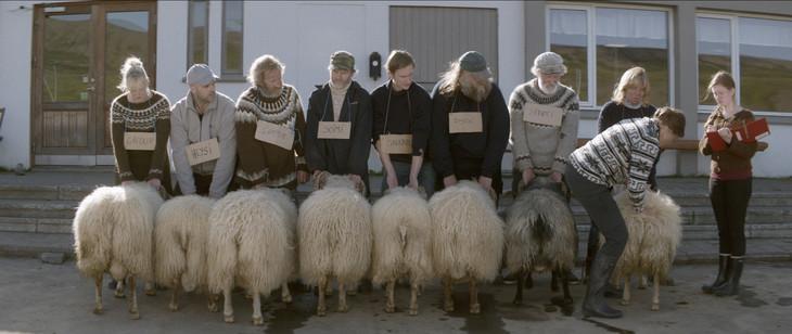 「ひつじ村の兄弟」 (c)2015 Netop Films, Hark Kvikmyndagerd, Profile Pictures