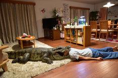 「家に帰ると妻が必ず死んだふりをしています。」