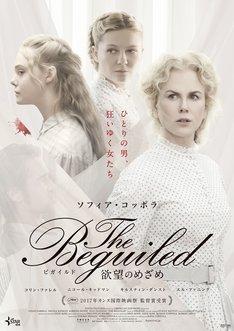 「The Beguiled/ビガイルド 欲望のめざめ」第2弾ポスタービジュアル