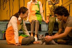 「猫は抱くもの」メイキングカット。沙織役の沢尻エリカ(左)と良男役のロシアンブルー(中央)。