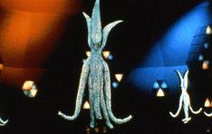 「ガメラ対宇宙怪獣バイラス」 (c)KADOKAWA1968