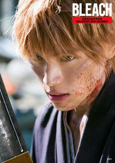 「映画 BLEACH 写真集 DEATHBERRY DAYS DOCUMENT」表紙