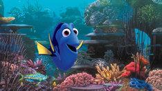 「ファインディング・ドリー」 (c)2016 Disney/Pixar
