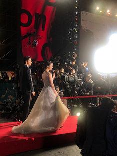 第23回釜山国際映画祭の様子。
