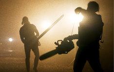 「マンディ 地獄のロード・ウォリアー」新場面写真