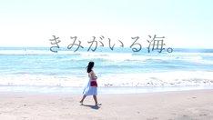 「きみがいる海。」