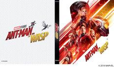 「アントマン&ワスプ」MovieNEXの初回限定リバーシブルジャケット。