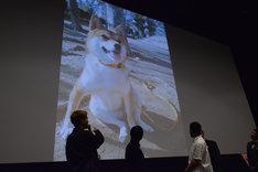 映画「柴公園」完成披露上映会の様子。