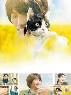 「旅猫リポート」 (c)2018「旅猫リポート」製作委員会 (c)有川浩/講談社