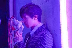 「東京喰種 トーキョーグール【S】」より、新田真剣佑演じる宗太。