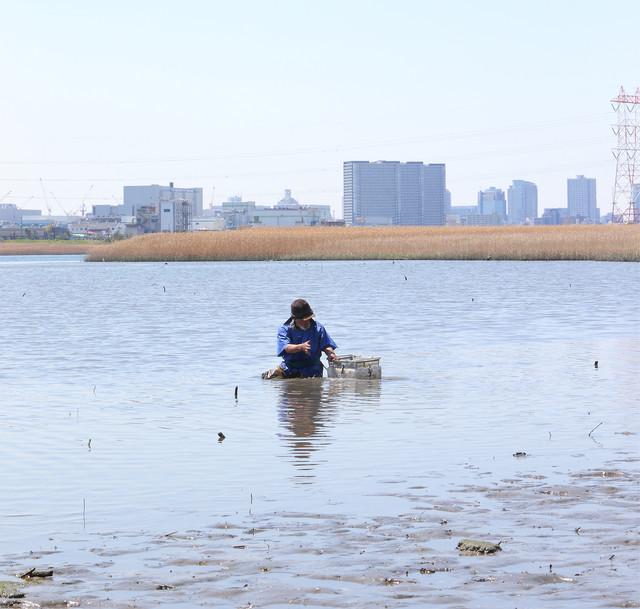 「東京干潟」 (c)TOKYO HIGATA PROJECT