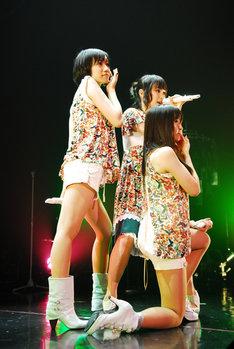 写真は6月1日に横浜BLITZで行われたツアーファイナルの模様。