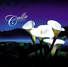 ユニット名のCallaとは、白い花をつける植物・オランダカイウのこと。花言葉は「素敵な美しさ、情熱」(写真はアルバム「In Bloom」ジャケット)。