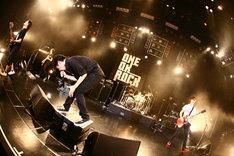 全国各地で熱いライブを展開するONE OK ROCK。ツアーは1月よりスタートしており、7月4日の日比谷野外大音楽堂まで、追加公演も合わせて32公演が行われる。