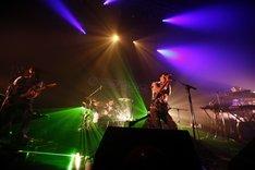 """サカナクションは本日7月15日にライブ音源「""""FISH ALIVE""""30min., 1 sequence by 6 songs SAKANAQUARIUM 2009@SAPPORO」をiTunes Store限定でリリース。"""