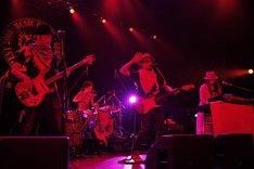 夏の始まりにふさわしいサウンドで全バンドのファンを魅了したTHE BEACHES(photo by YOJI KAWADA)。
