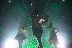 写真は9月20日に東京・Zepp Tokyoにて開催されたイベント「YOUNG FLAG 09」でのライブの模様。なお「直角二等辺三角形TOUR」は8月7日の埼玉・戸田市文化会館からスタートし、現在までに19公演中11公演が終了している。