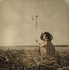 ドラマ「JIN-仁-」は毎週日曜21:00よりTBS系列でオンエア(写真はシングル「逢いたくていま」ジャケット)。
